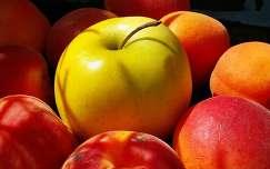 Kajszibarack,golden alma,gyümölcs