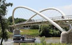 Magyarország, Szolnok, Tisza, Tiszavirág-híd