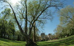Tóalmási kastély és parkja