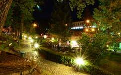kertek és parkok románia éjszakai képek szováta nyár erdély