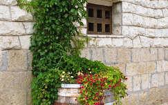 Tokajban még a virágokat is hordóban tartják