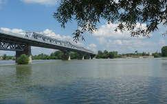 Baja híd, Duna