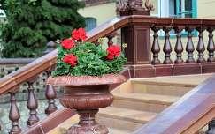 Magyarország, Pécs, Zsolnay negyed, dekoráció
