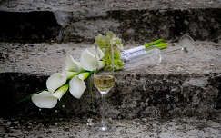 Esküvői kála egy kis pezsgővel
