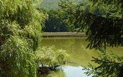 Szalajka-völgy halastó