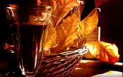 ősz ital csendélet bor levél