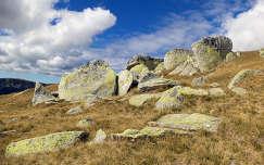 Energizáló kövek