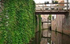 'S-Hertogenbosch, Noord-Holland. Rondreis Binnendieze.  foto made by Elly Hartog