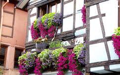 Riquewihr,Franciaország
