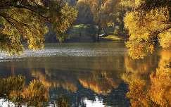 ősz, tükröződés, színek