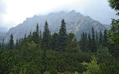 Slovakia - Tatra(Lomnic kornyeke)