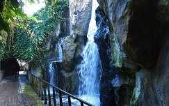 Amsterdam Zoo, The Waterfall