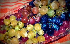 Szekszárdi szőlő