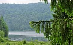 románia tó medve-tó szováta erdő kárpátok erdély