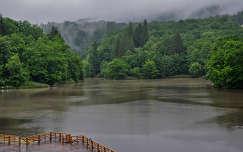 Medve-tó, Erdély