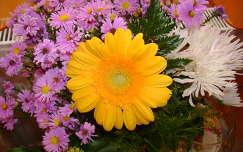 gerbera őszirózsa virágcsokor és dekoráció