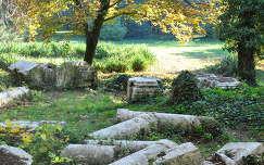 Alcsúti Arborétum, pálmaház romjai