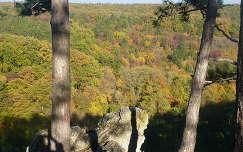 Balatonfüredi Koloska-völgy ősszel felülnézetből