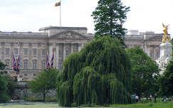 Buckingham palota, St. James park, London
