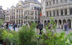 Brüsszel,Grand Place,Belgium