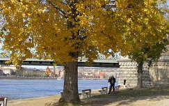 Őszi panoráma a Lánchíd lábától,Budapest