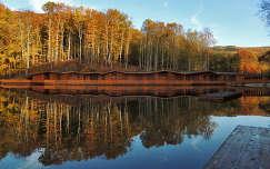 tükröződés ház ősz tó románia szováta erdő erdély kárpátok faház