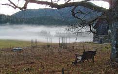 austria-köd