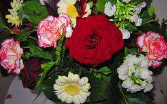Haarlem-Holland, Anniversary bouquet