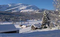 Norvég tél
