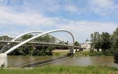 Magyarország, Szolnok, Tisza, Tiszavirág-híd, háttérben a volt Zsinagóga