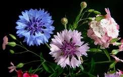 Virágcsokor-részlet
