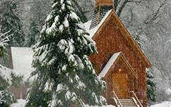 tél karácsony havazás templom fenyő