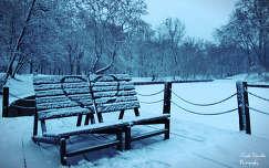 I love tél, Fotó: Novák Titanilla