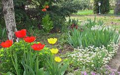 tavaszi kert