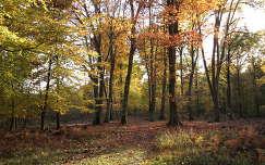 Magyarország; Őrségi Nemzeti Park