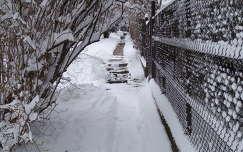 Hűvösvölgy hó alatt