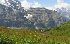 Svájc,Jungfrau