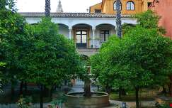 SEVILLA-SPAIN, JARDINES DEL REAL ALCAZAR