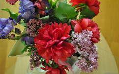 Pünkösdi rózsa, orgona és írisz
