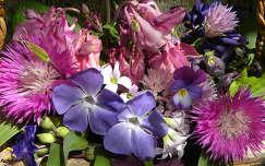 Kertünk virágai