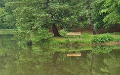Kőkapui horgász tó