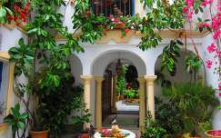 CÓRDOBA-SPAIN, Patio