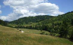 Erdély,Szépvízi völgy
