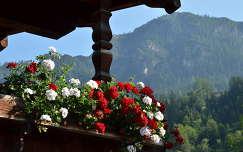 Ausztria, Alpbach városa
