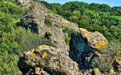 A Prédikálószék gerincén elhelyezkedő Vadálló-kövek,Visegrád környéki hegycsoport-Fotó:Szolnoki Tibor