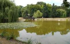 Békás tó - Debrecen