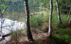 Szent Anna-tó, Erdély