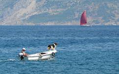 Horvátország - Brac sziget