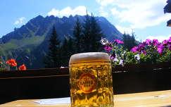 Obwaldhütte, Ausztria