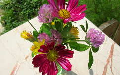 vadvirág pillangóvirág virágcsokor és dekoráció